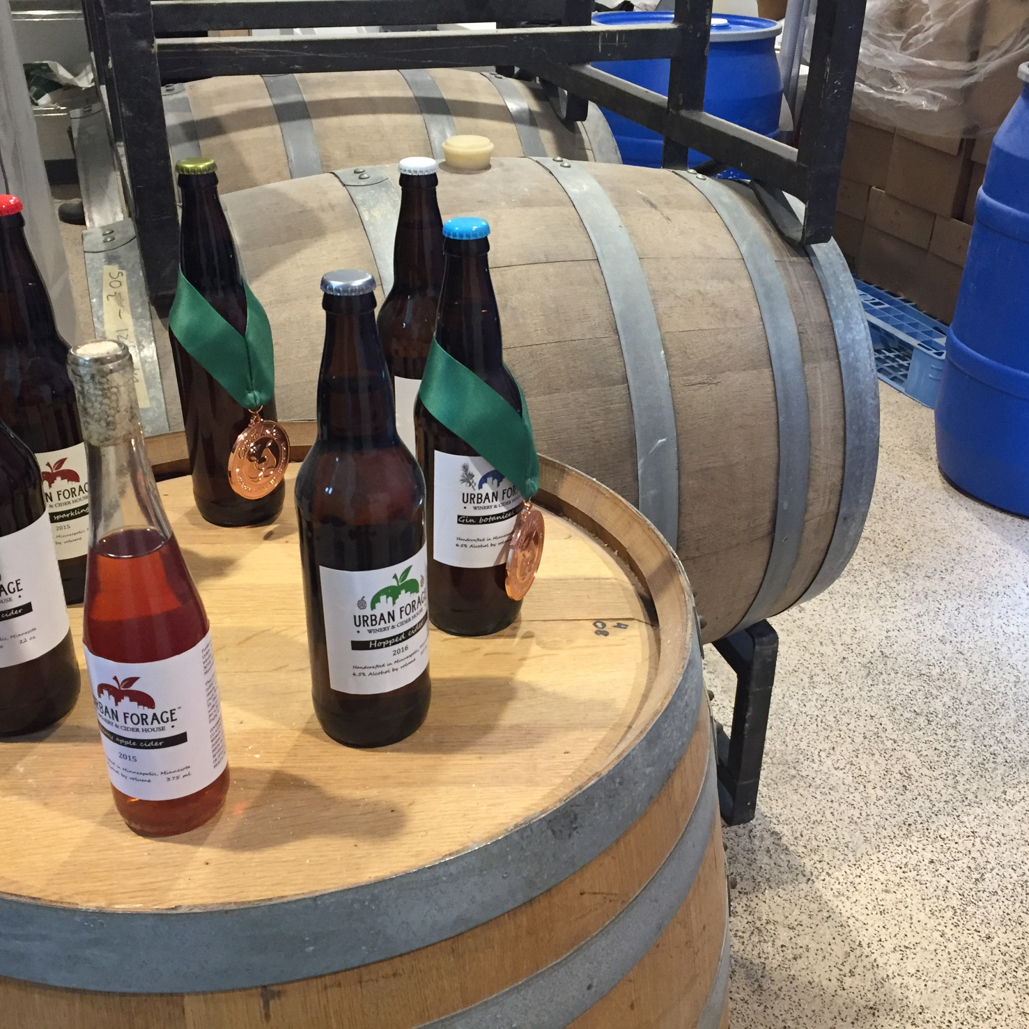 Urban Forage in Minneapolis makes ciders from foraged apples. (I took this photo.)
